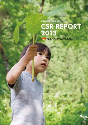 csr2013-1